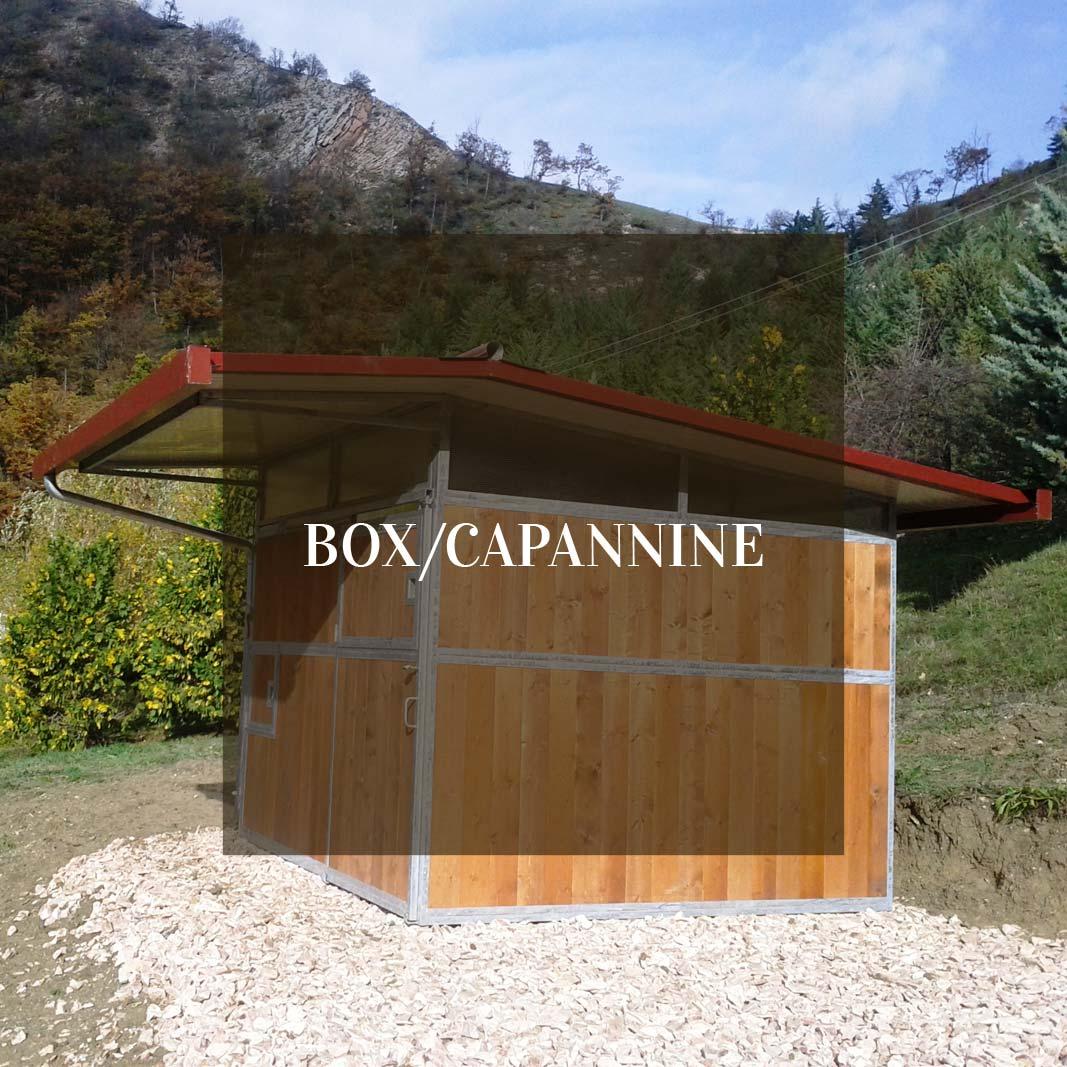 Elle Emme Box Box Per Cavalli Capannine Per Cavalli Noleggio